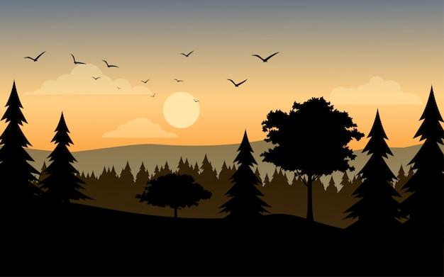 Schattenbild des waldes bei sonnenuntergang