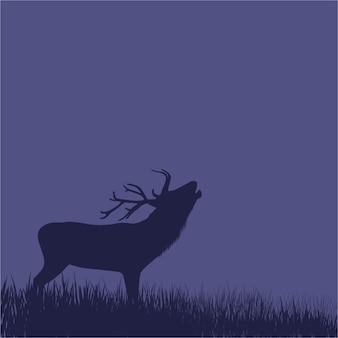 Schattenbild eines rotwilds, das auf einem hügel nachts steht.