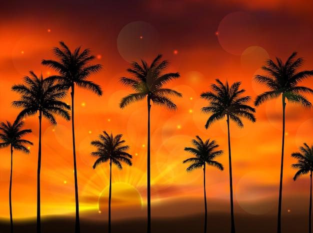 Schattenbild von kokosnussbäumen bei sonnenuntergang
