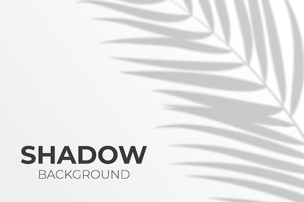 Schattenüberlagerung von blättern im transparenten stil