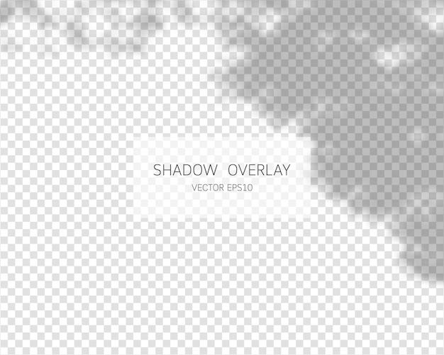 Schattenüberlagerungseffekt natürliche schatten auf transparentem hintergrund isoliert