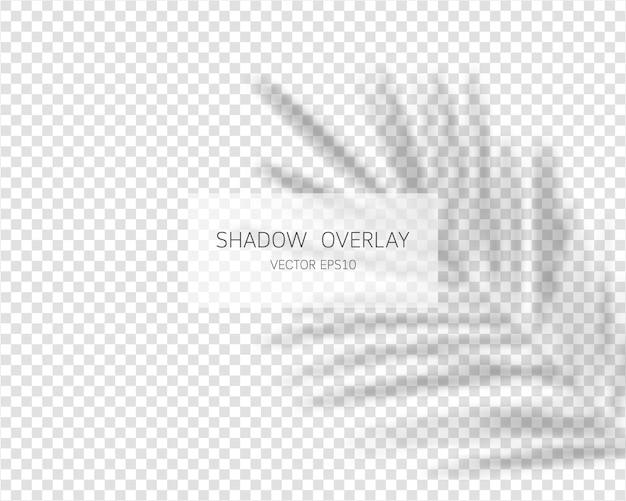 Schattenüberlagerungseffekt. natürliche schatten isoliert auf transparent.