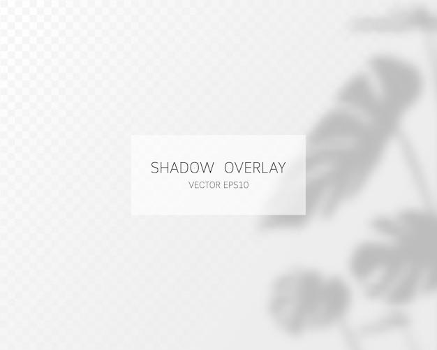 Schattenüberlagerungseffekt. natürliche schatten isoliert