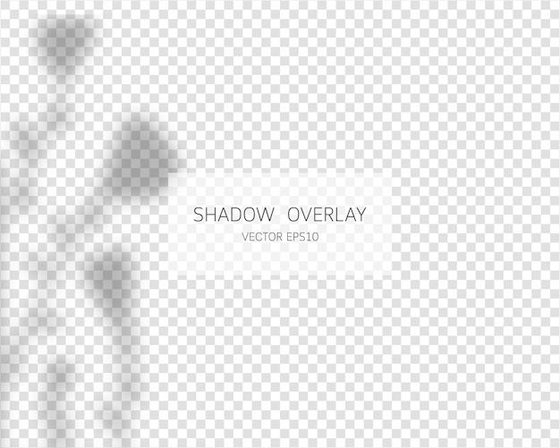 Schattenüberlagerungseffekt. natürliche schatten lokalisiert auf transparentem hintergrund. .