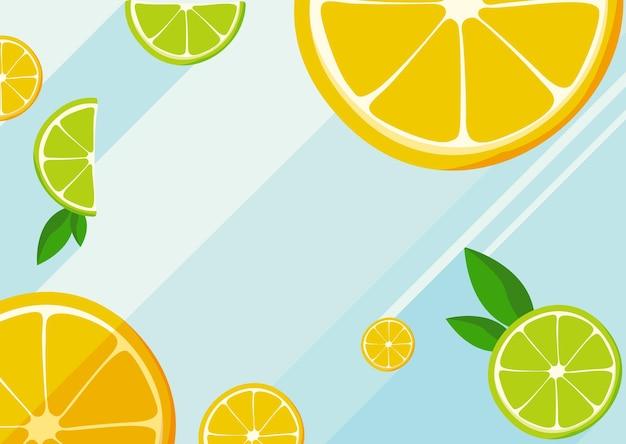 Scheiben der orangen- und limettenfruchtillustration