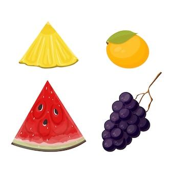 Scheiben und ganze frucht ananas, wassermelone, mango und trauben gesetzt