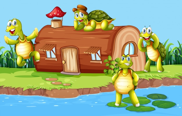 Schildkröte am holzhaus