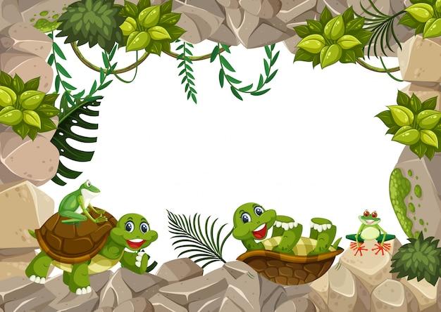 Schildkröte auf steingrenze