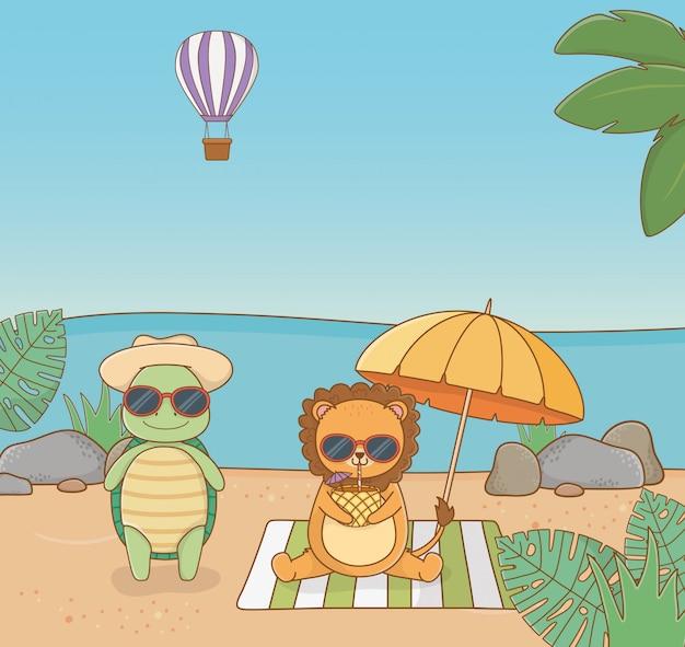 Schildkröte und löwe am strand