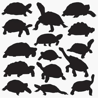 Schildkröten-silhouetten