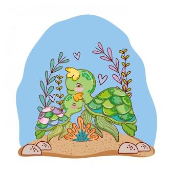 Schildkrötenfamilientiere mit algenpflanzen