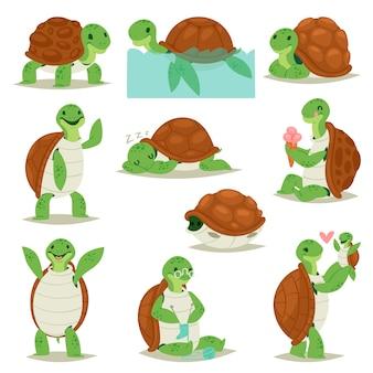 Schildkrötenkarikatur-sitzschildkrötencharakter, der im meer schwimmt und schildkröte in schildpatt-illustrationssatz des reptils, das in schildkrötenpanzer auf weißem hintergrund versteckt