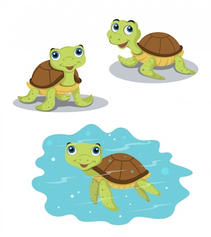 Schildkrötenvektorentwurf
