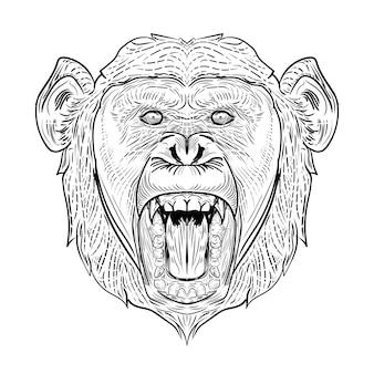 Schimpansenkopf zeichnen gravur