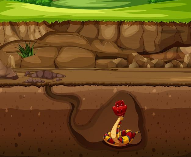 Schlange in der unterirdischen höhle