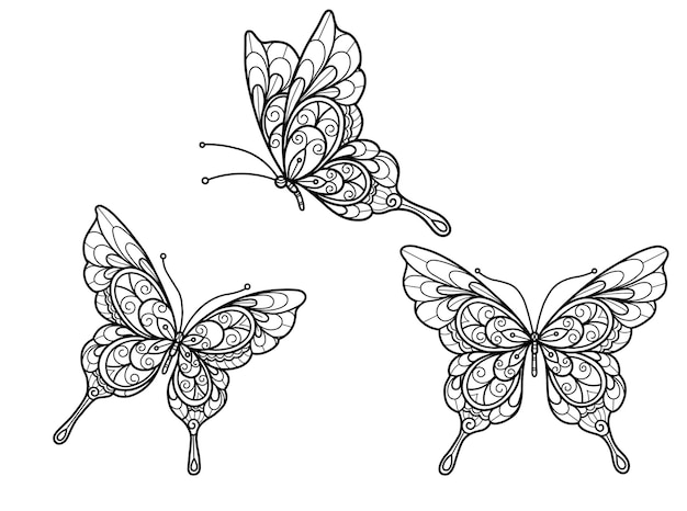 Schmetterling auf weißem hintergrund hand gezeichnete skizze für erwachsenenmalbuch