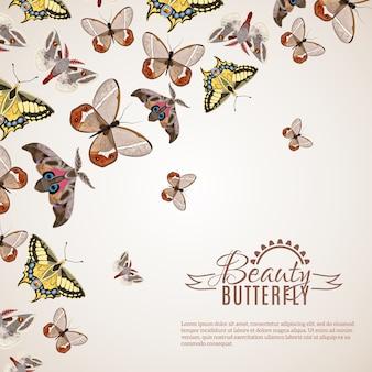 Schmetterling realistischer hintergrund