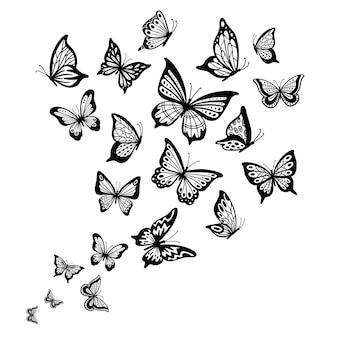 Schmetterlinge fließen, schmetterlingsflügel, frühlingsfliegeninsekt und flugwellenhintergrund
