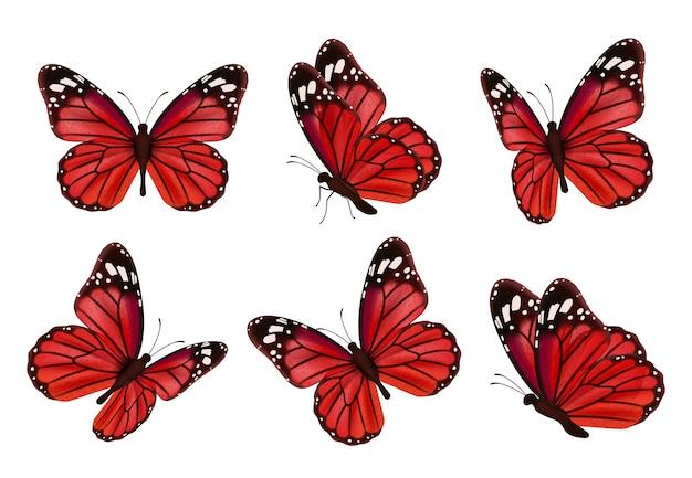 Schmetterlinge. realistische farbige insekten schöne mottenvektorsammlung von schmetterlingen. illustrationssatz des fliegenden schmetterlings rot schwarz