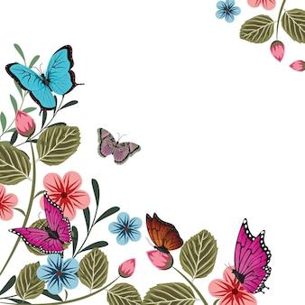 Schmetterlings-blumen-blumensommer-frühlings-rahmen-hintergrund
