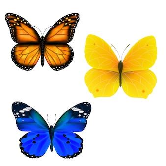 Schmetterlings-set