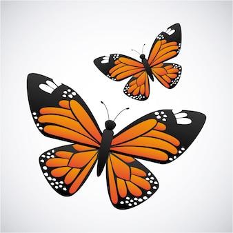 Schmetterlingsentwurf