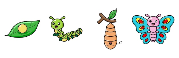 Schmetterlingsmetamorphose-sammlung