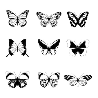 Schmetterlingssatz auf weißem hintergrund
