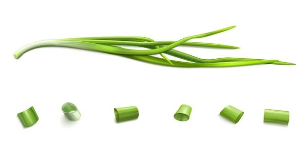 Schnittlauchbündel und scheiben frühlingszwiebeln oder knoblauch schneiden