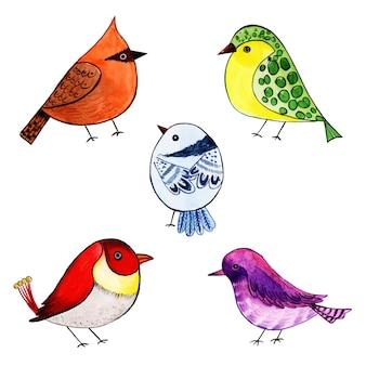 Schöne aquarell exotische vogel-sammlung