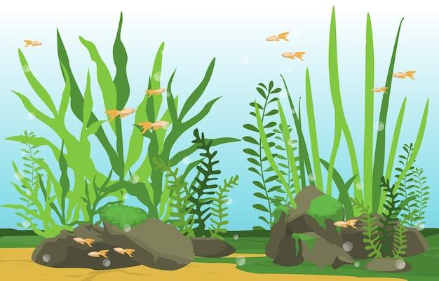 Schöne aquarienfisch-bunte riff-wasser-pflanzen-illustration