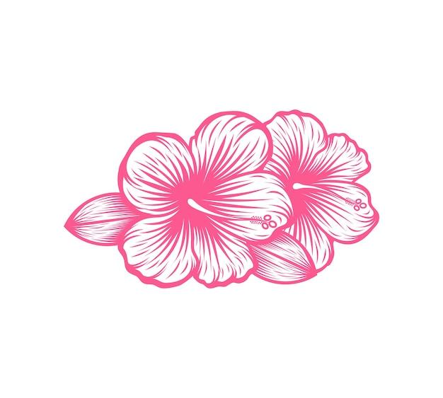 Schöne blühende blume hibiskus vektor