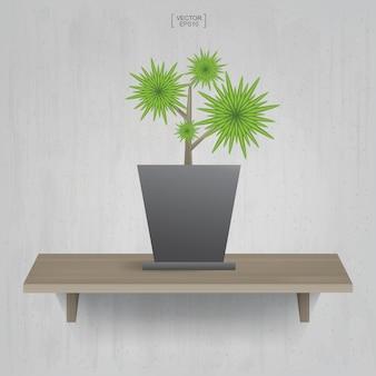 Schöne dekorationspflanze im blumentopf auf holzregalhintergrund. idee für innenarchitektur und dekoration. vektor-illustration.