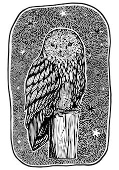 Schöne eule sitzt in einer gemütlichen sternennacht auf einem stumpf. handgezeichnete vektor-illustration. einzelne schwarze grafische zeichnung. ausführliches retrostilbild lokalisiert auf weiß.