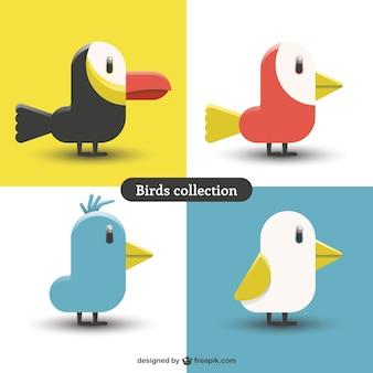 Schöne farben vögel