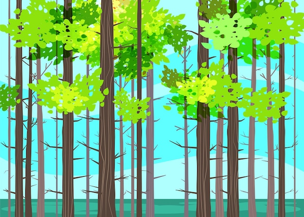Schöne frühlingswaldbäume, grünes laub, landschaft, büsche, silhouetten von stämmen, horizont