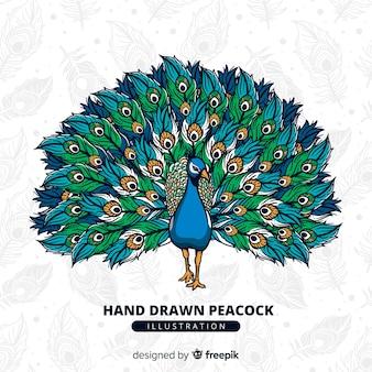 Schöne gezeichnete art des pfaus in der hand