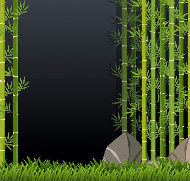 Schöne grüne bambusschablone