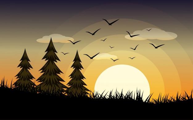 Schöne landschaft des sonnenuntergangs in der wiese