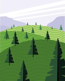Schöne landschaftsszene mit nadelbaumwaldfeldvektorillustrationsentwurf