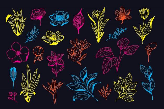 Schöne neonhand gezeichnete blumenvektorsammlung