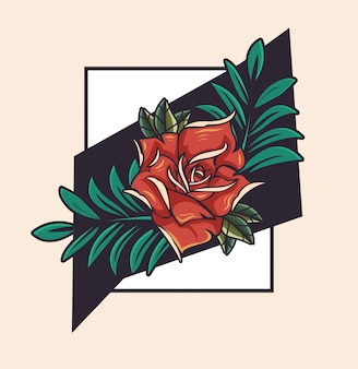 Schöne rosenblume