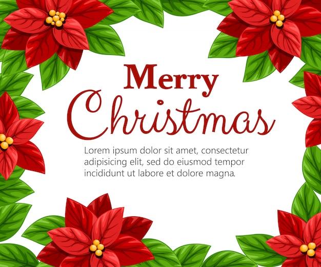 Schöne rote weihnachtssternblume und grüne blätter-weihnachtsdekorationsillustration auf weißem hintergrund mit platz für ihren text