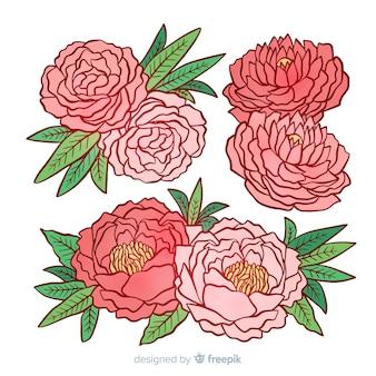 Schöne sammlung pfingstrosenblumen
