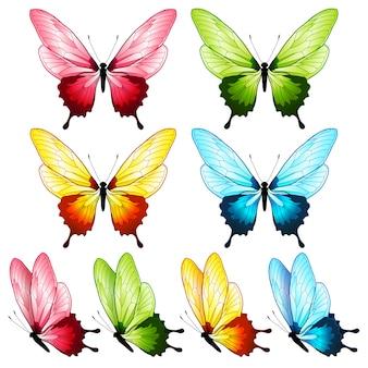 Schöne schmetterlingssammlung, vier farben