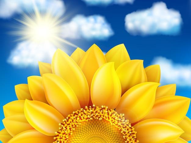 Schöne sonnenblume gegen blauen himmel mit wolken.