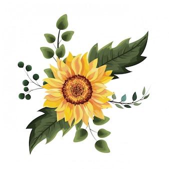 Schöne sonnenblumenzeichnung