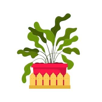 Schöne topfpflanze mit dekorativem zaun. illustration lokalisiert auf weißem hintergrund. trendy hausdekorikone. zimmerpflanze mit großen grünen blättern im rosa topf.