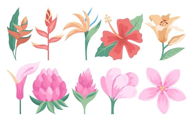 Schöne tropische blumen eingestellt. botanische gartenpflanzen, dekorative dschungelsammlung. flache vektorillustration