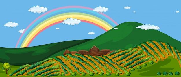 Schöner bauernhof berg und regenbogen